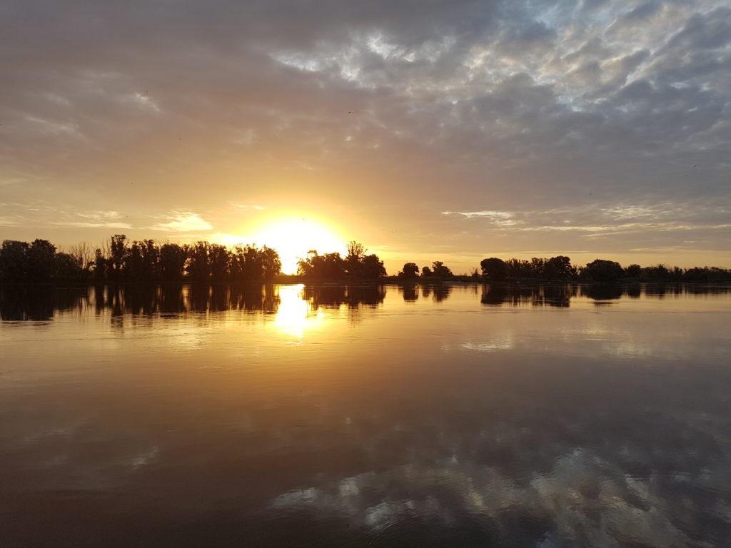 ALOHA Sommercamp 2021 - Sonnenaufgang an der Elbe
